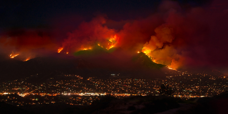 A wildfire burning at night