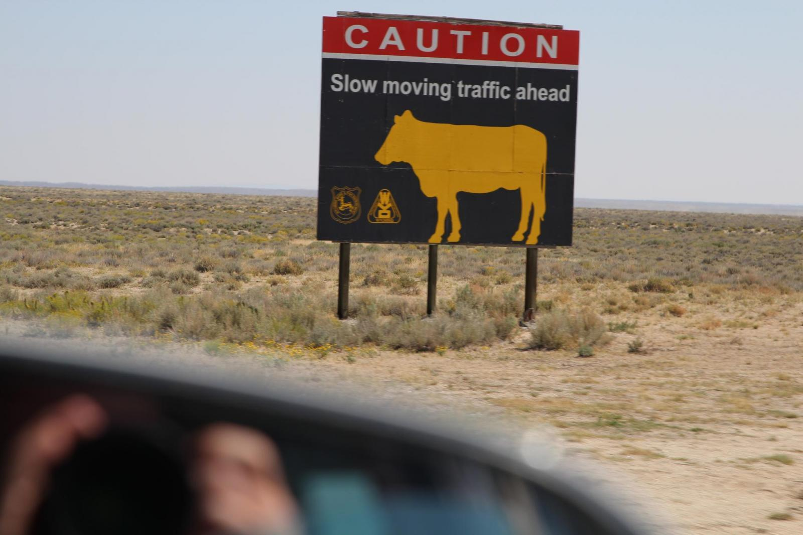 Cattle sign in Wyoming