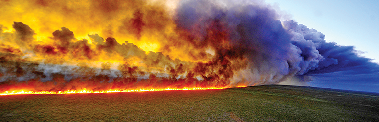 Giant wildfire stretches into the horizon