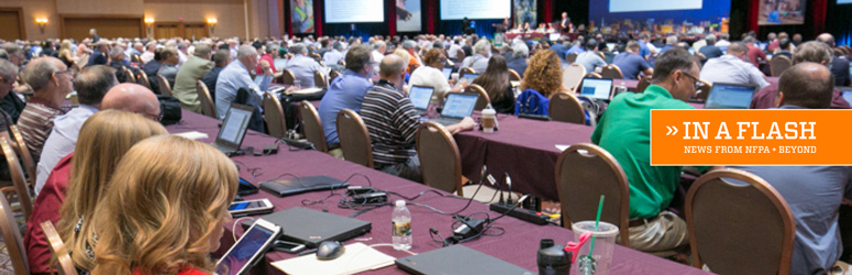 Voting members during the 2016 Technical Session at the NFPA Conference and Expo