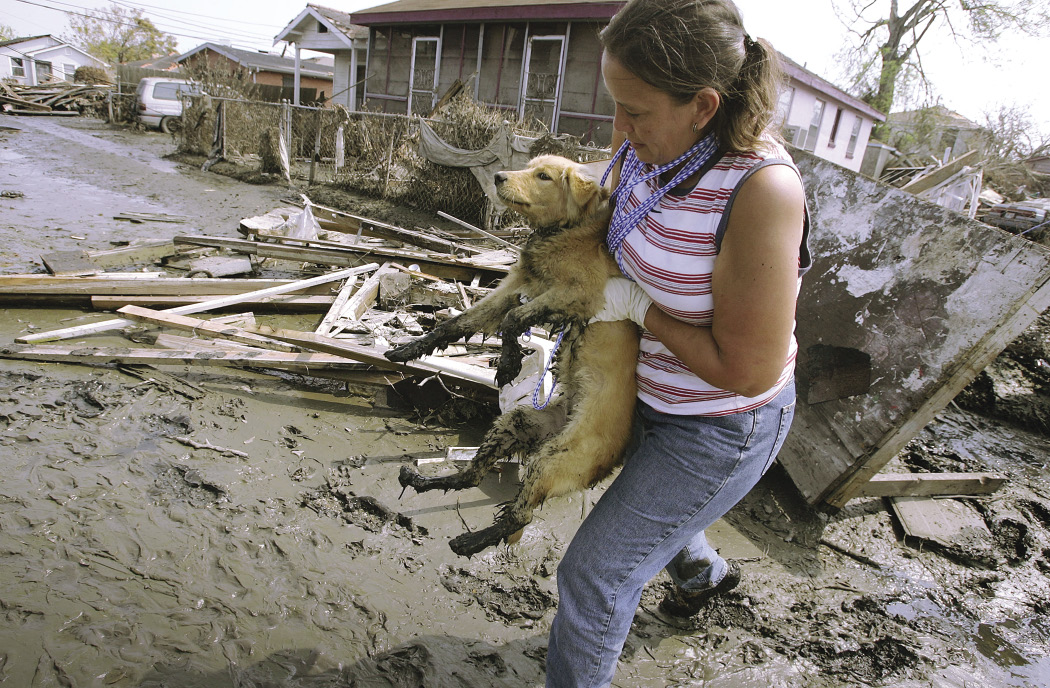 Lady carries dog to safety after a disaster