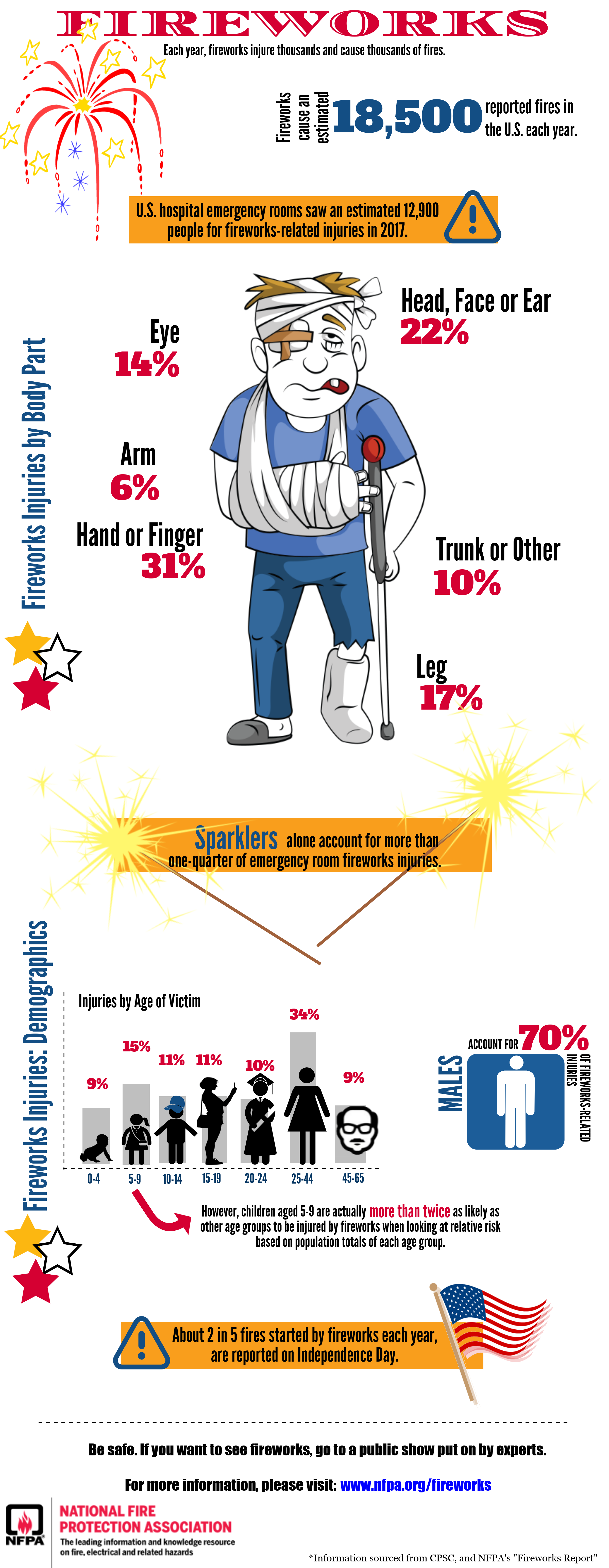 Fireworks Infographic